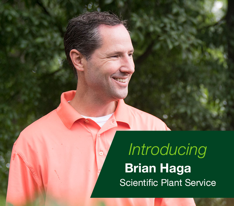 Brian Haga Scientific Plant Service